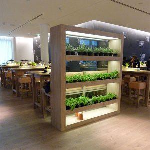Vapiano-Restaurant-Hanauer-Landstr.-Frankfurt-(5)